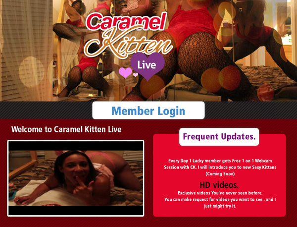 Free Caramel Kitten Live Hacked Login