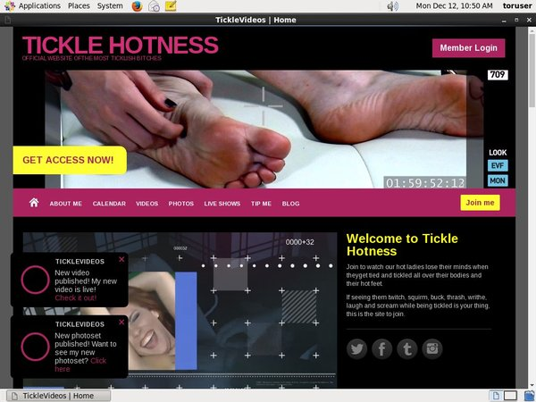 TICKLE HOTNESS Without Card